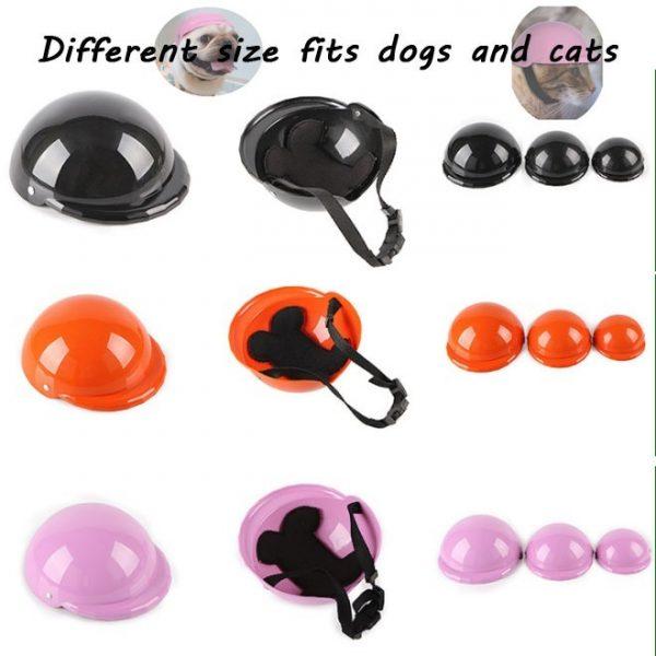 dogs helmet