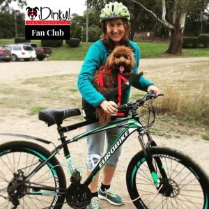 Ride-with-us-and-dinky-dog-products